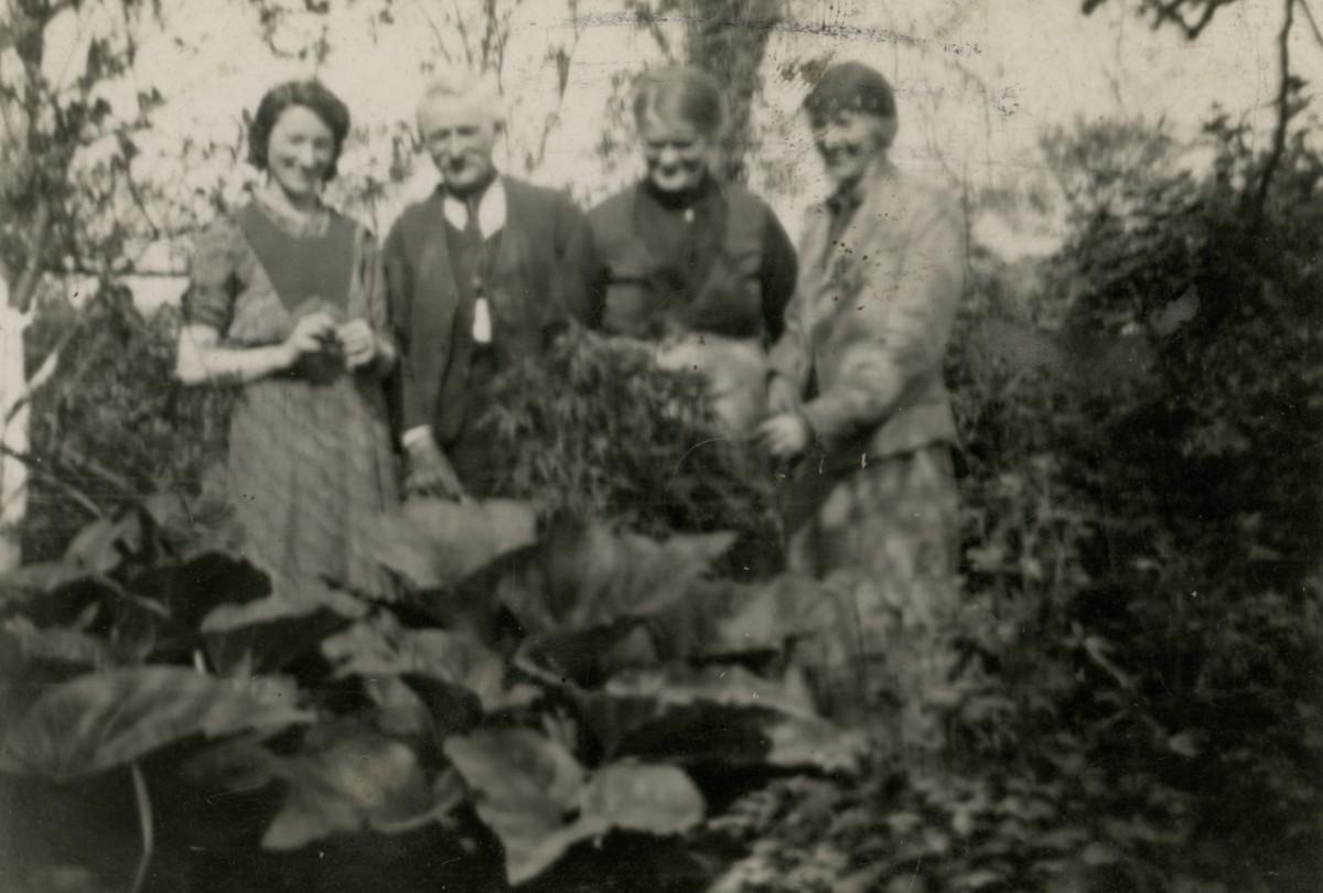 Conlon // Philadelphia & County Monaghan :: The McNeel family