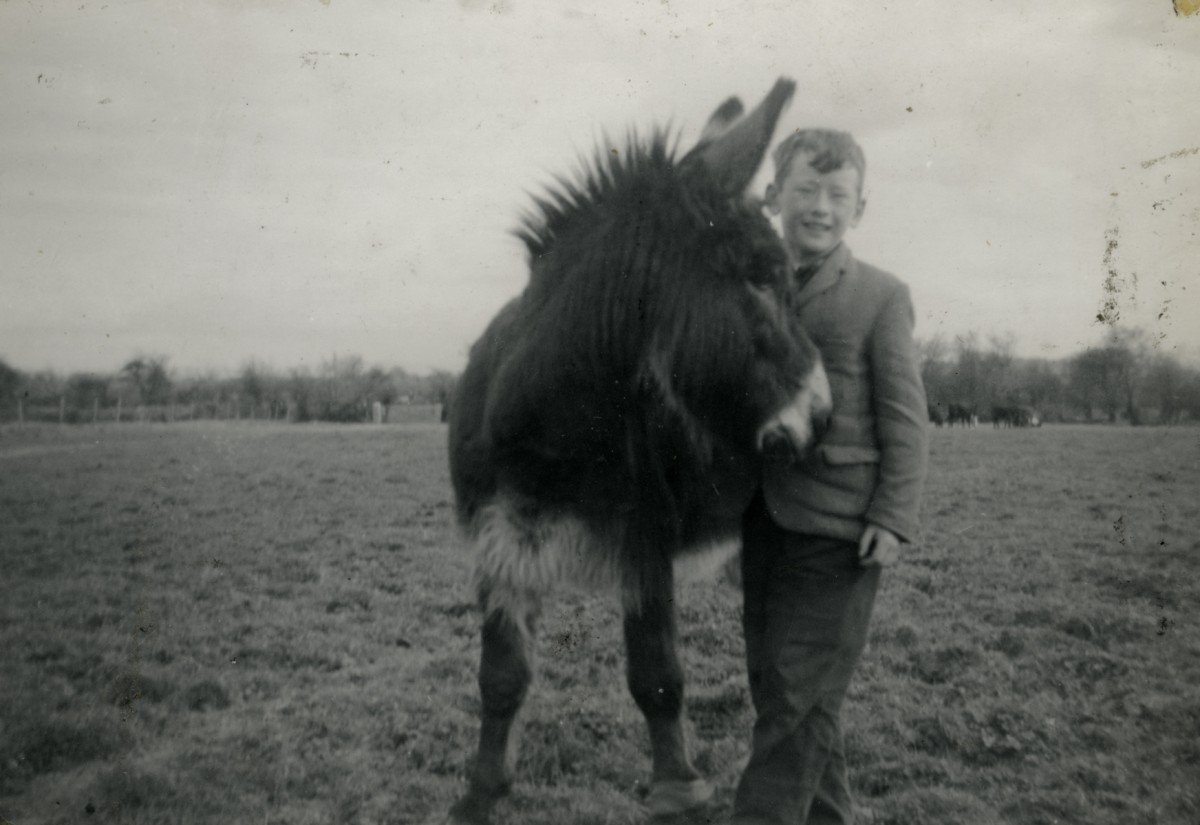 McGing // County Meath :: Austin McGing with donkey
