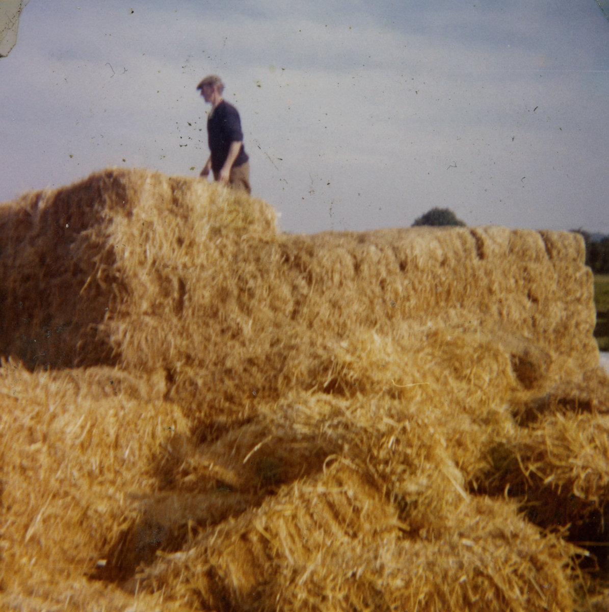 McGing // County Meath :: Austin McGing standing on a reek of hay