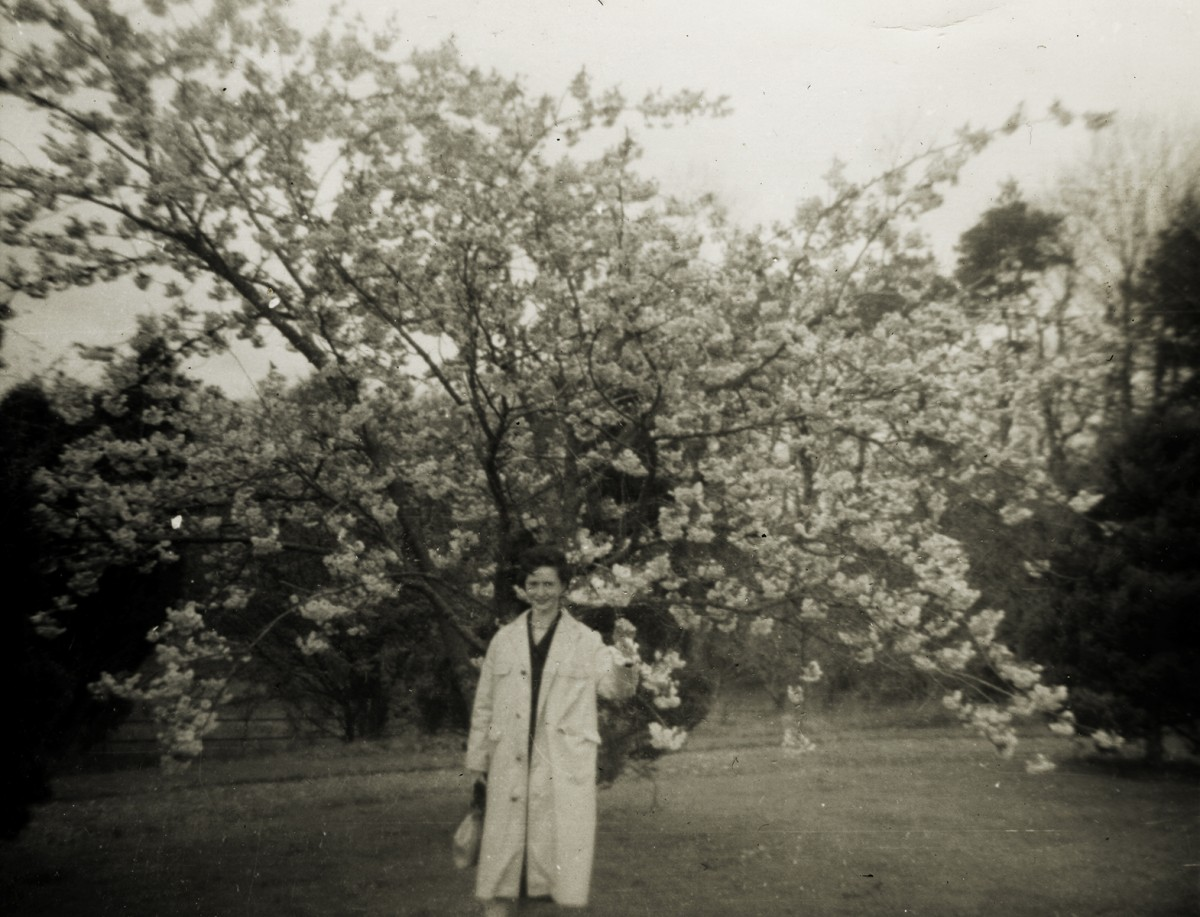 Gilroy  //  County Louth  :: Woman in a park