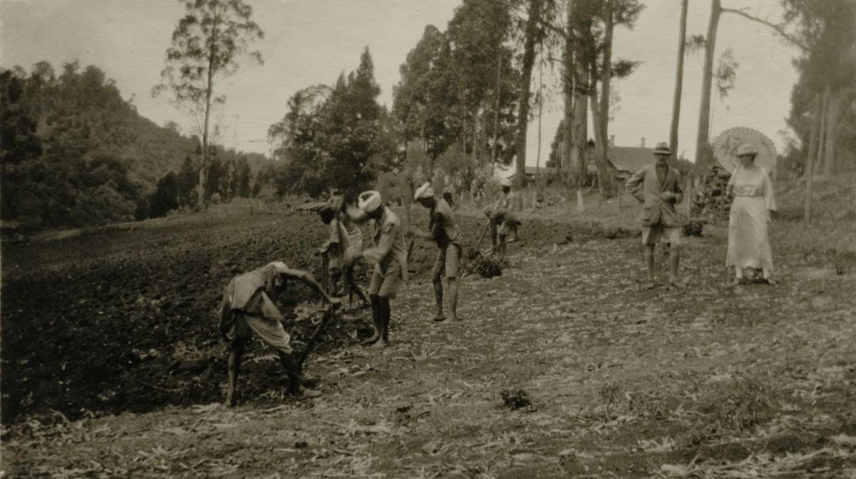 McKay  //  County Antrim :: John Wallace McKay  in India