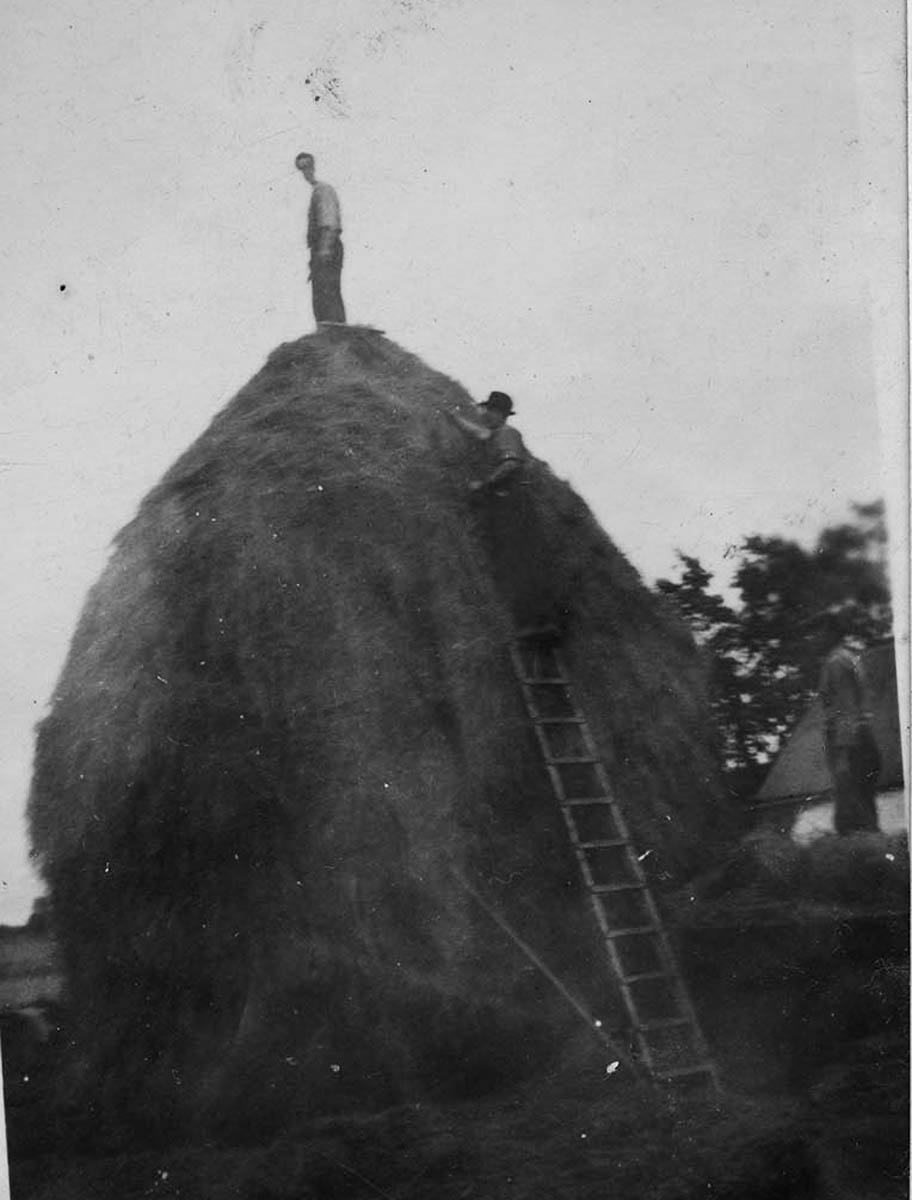 Conlon // County Monaghan :: Building a hay stack in County Armagh, 1950's