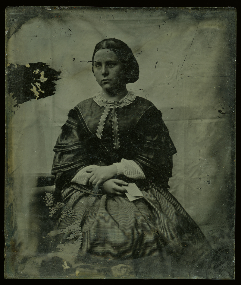 Shackleton // County Kildare :: Shackleton lady