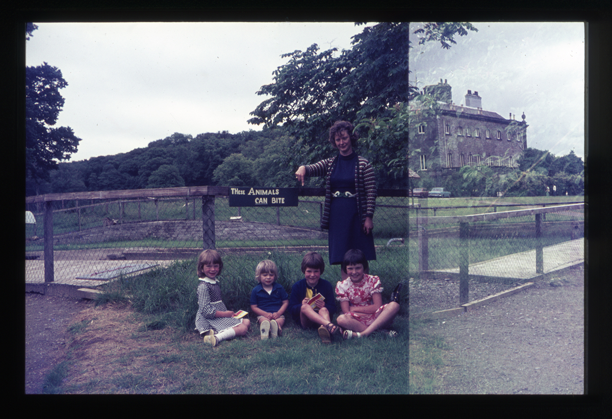 Declan Gilroy Archive // County Sligo :: At the zoo